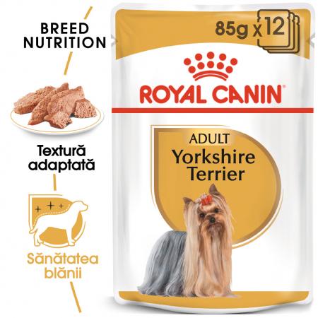 ROYAL CANIN Yorkshire Terrier hrana umeda 85g0
