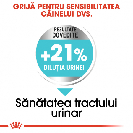 ROYAL CANIN Urinary Care Mini 3 kg2