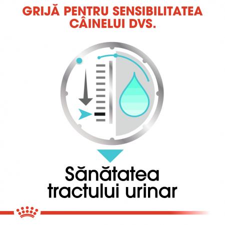 ROYAL CANIN Urinary Care hrana umeda 85g3