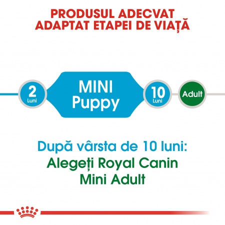 ROYAL CANIN Mini Puppy 4 kg2