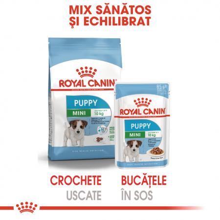 ROYAL CANIN Mini Puppy hrana umeda 85 g2