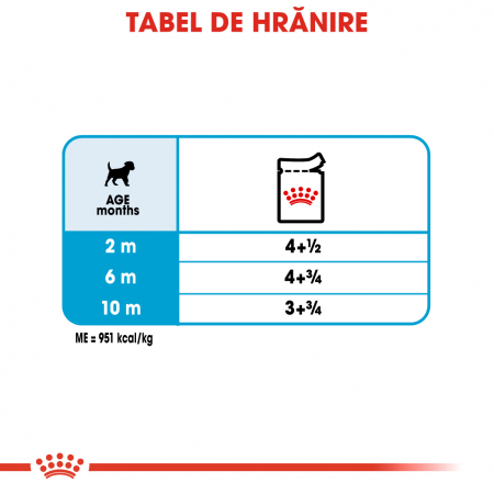 ROYAL CANIN Mini Puppy hrana umeda 12x85g5