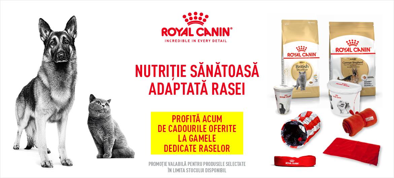 Royal Canin RASE