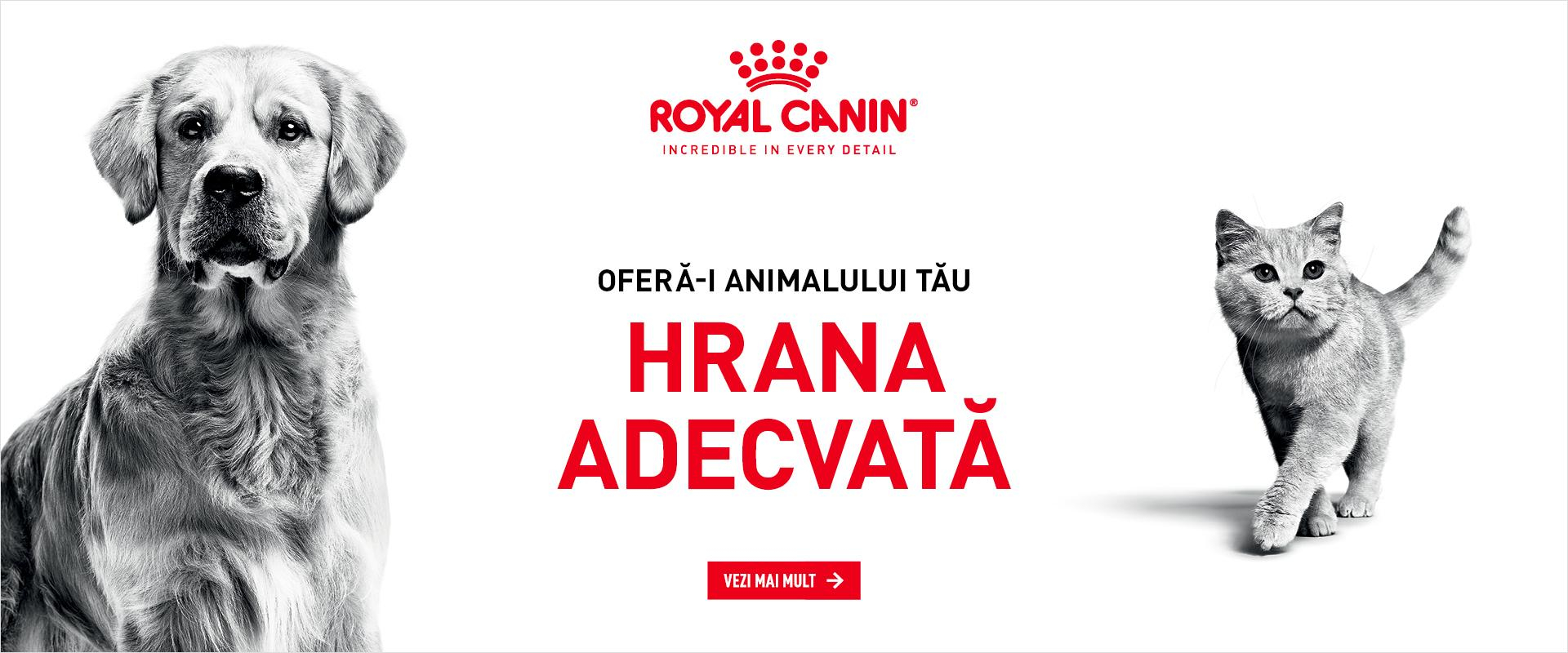 Royal Canin 1