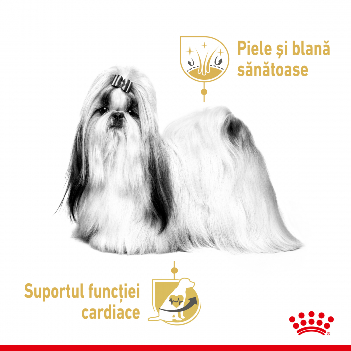 Royal Canin Shih Tzu Adult hrana umeda caine 2