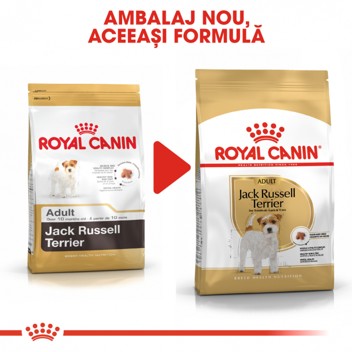 Royal Canin Jack Russell Terrier Adult, hrana uscata caini, 1.5 kg [4]