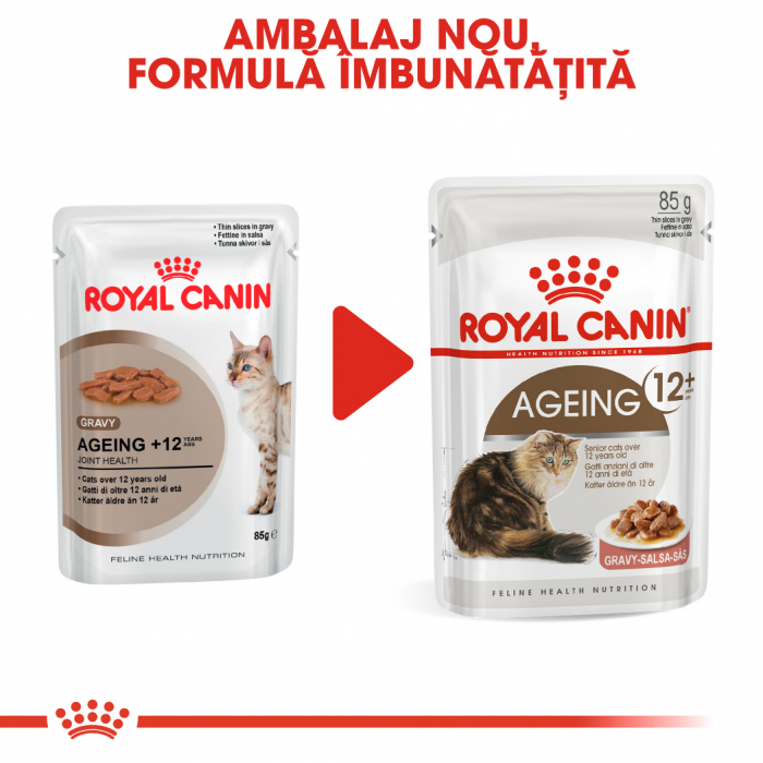 Royal Canin AGEING 12+ Hrana Umeda Pisica 6