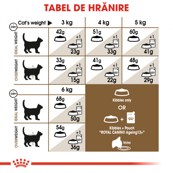 Royal Canin AGEING 12+ Hrana Uscata Pisica 4