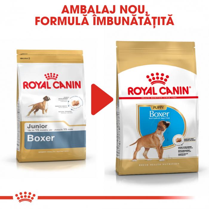 Royal Canin BOXER Puppy Hrana Uscata Caine 6