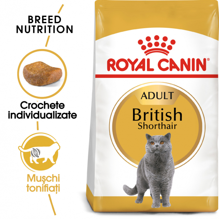 Royal Canin BRITISH SHORTHAIR Adult Hrana Uscata Pisica 0