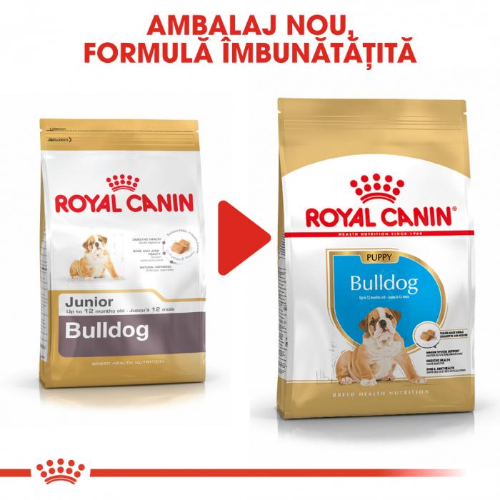 Royal Canin BULLDOG Puppy Hrana Uscata Caine 6