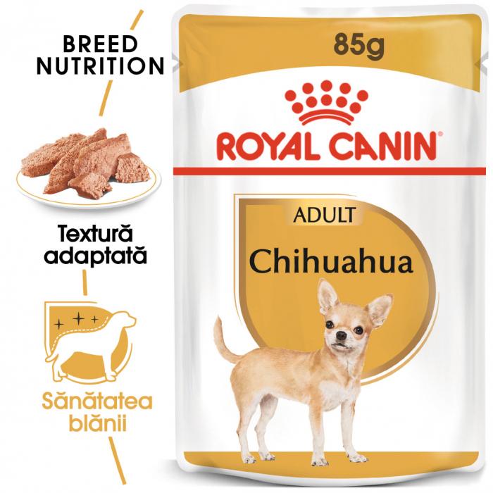 Royal Canin Chihuahua Adult hrana umeda caine [0]