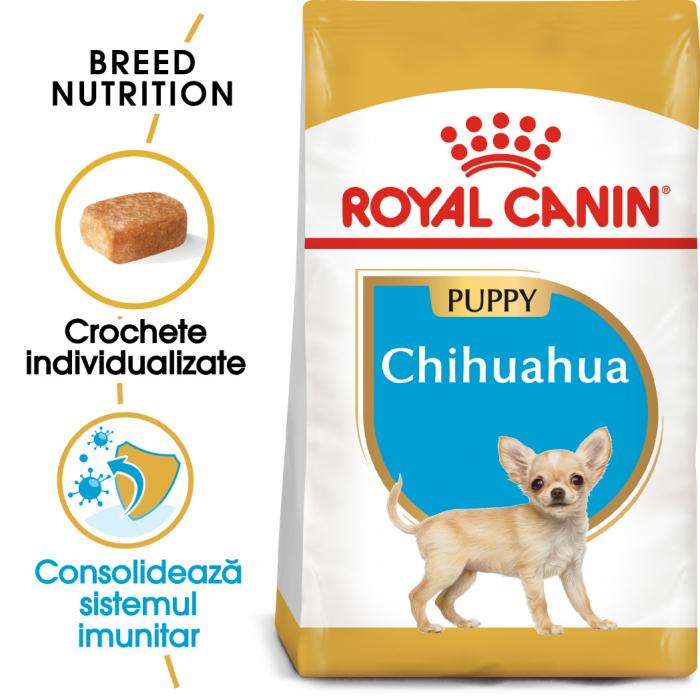 Royal Canin CHIHUAHUA Puppy Hrana Uscata Caine 0