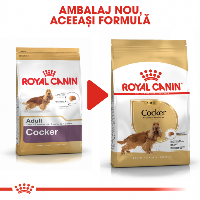 Royal Canin COCKER Adult Hrana Uscata Caine 4