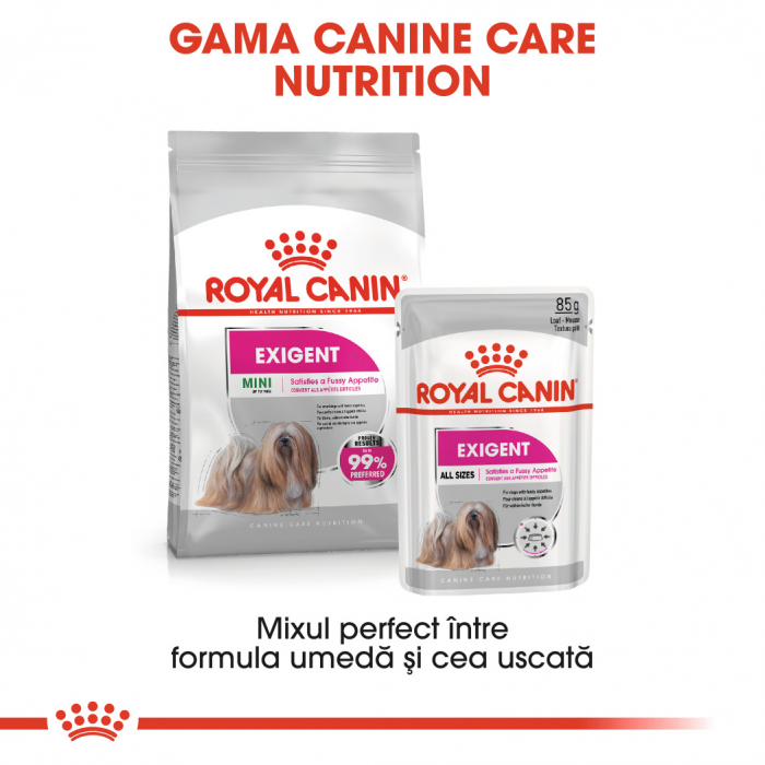 Royal Canin Exigent Adult hrana umeda caine, apetit capricios (pate), 12 x 85 g [4]