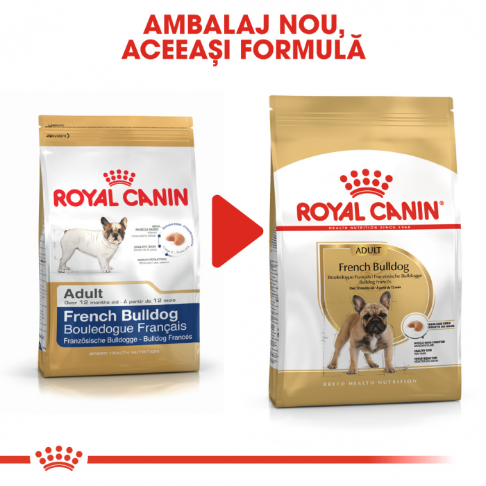 Royal Canin FRENCH BULLDOG Adult Hrana Uscata Caine 2