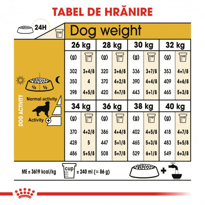 Royal Canin GOLDEN RETRIEVER Adult Hrana Uscata Caine 5
