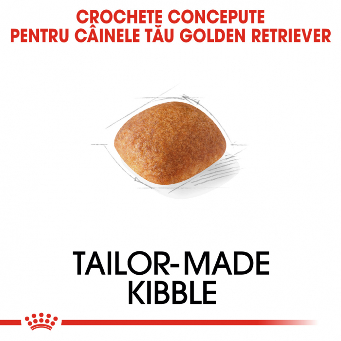 Royal Canin GOLDEN RETRIEVER Adult Hrana Uscata Caine 2