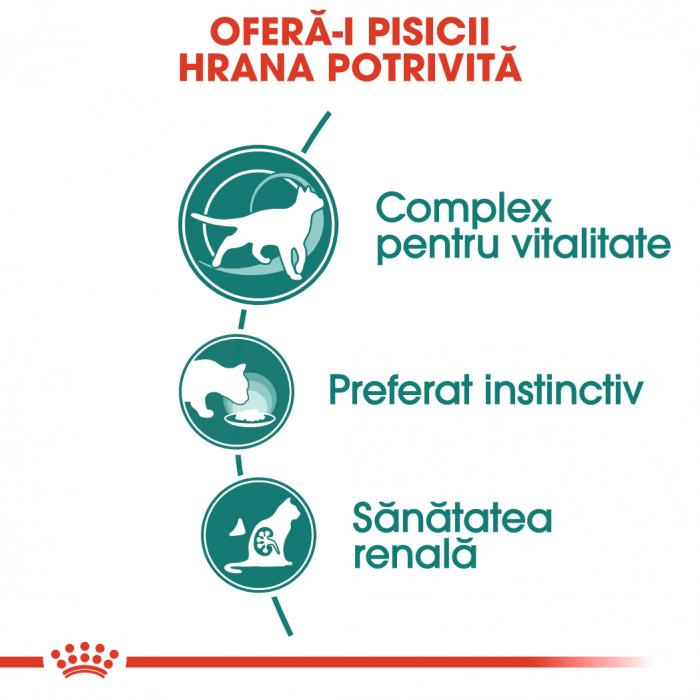 Royal Canin INSTINCTIVE 7+ Gravy Hrana Umeda Pisica 2