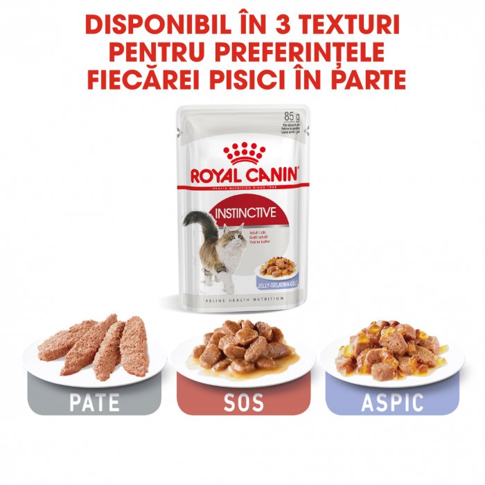 Royal Canin INSTINCTIVE Jelly Hrana Umeda Pisica 5