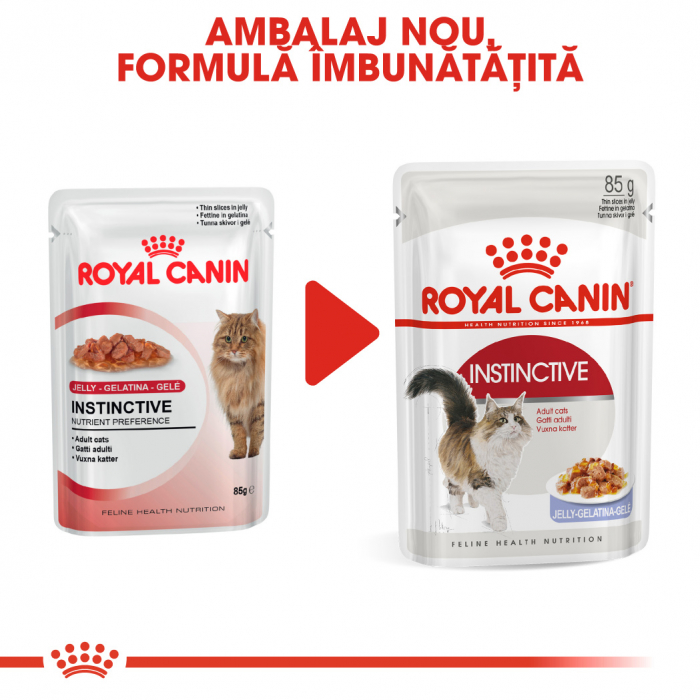 Royal Canin INSTINCTIVE Jelly Hrana Umeda Pisica 6