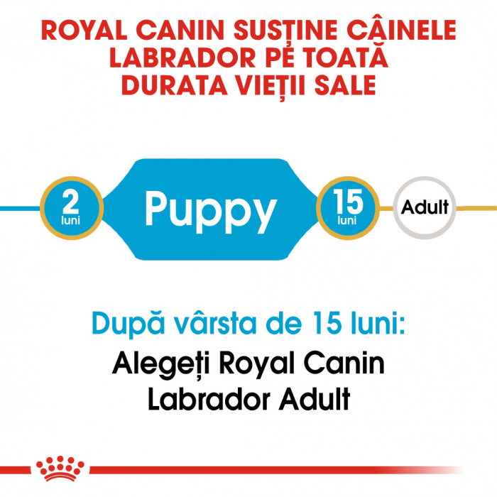 Royal Canin LABRADOR RETRIEVER Puppy Hrana Uscata Caine 1