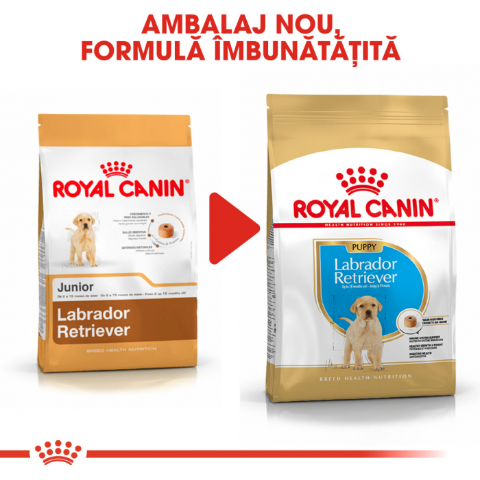 Royal Canin LABRADOR RETRIEVER Puppy Hrana Uscata Caine 6