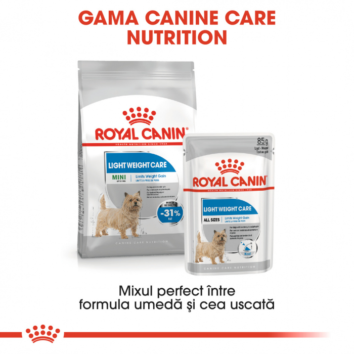 Royal Canin LIGHT Loaf 12x85g Hrana Umeda Caine 4