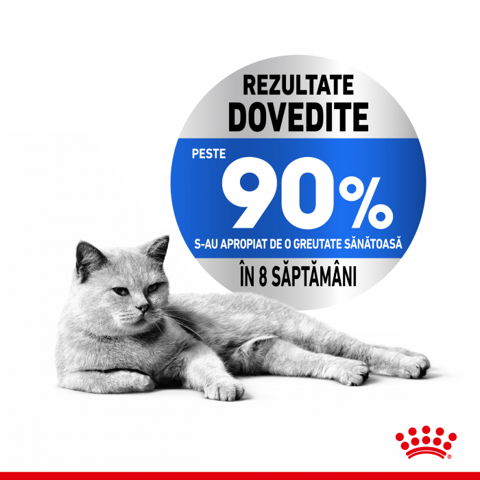 Royal Canin LIGHT WEIGHT CARE Hrana Uscata Pisica - TEST 3