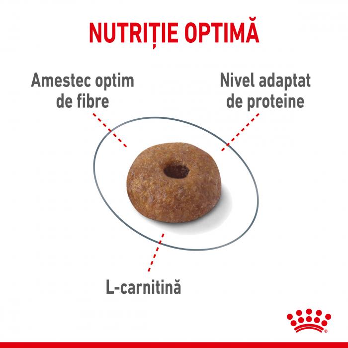 Royal Canin Light Weight Care Adult  hrana uscata pisica limitarea cresterii in greutate, 400 g - TEST 4