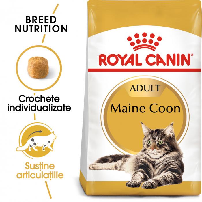 Royal Canin MAINE COON Adult Hrana Uscata Pisica 0