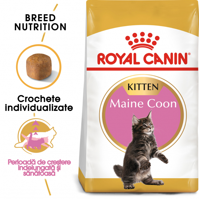 Royal Canin MAINE COON Kitten Hrana Uscata Pisica 0