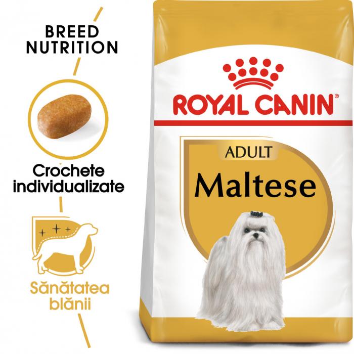 Royal Canin Maltese Adult hrana uscata caine 0