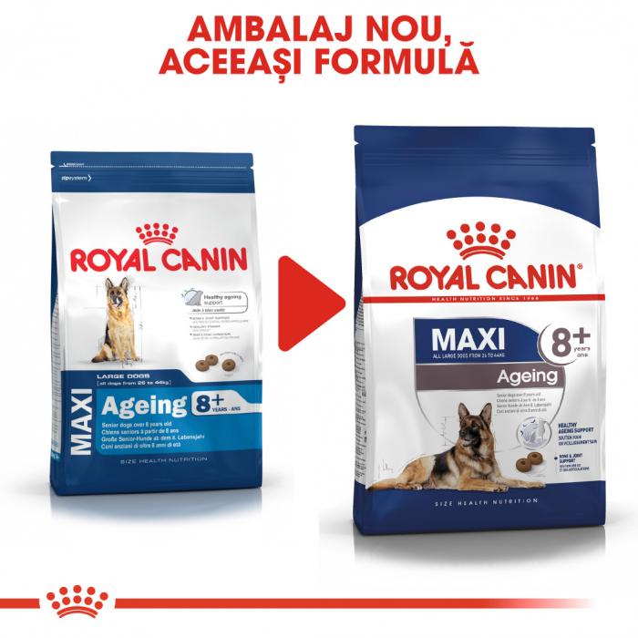 Royal Canin MAXI AGEING 8+ Hrana Uscata Caine 1