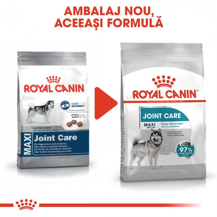 Royal Canin MAXI JOINTCARE Hrana Uscata Caine 1