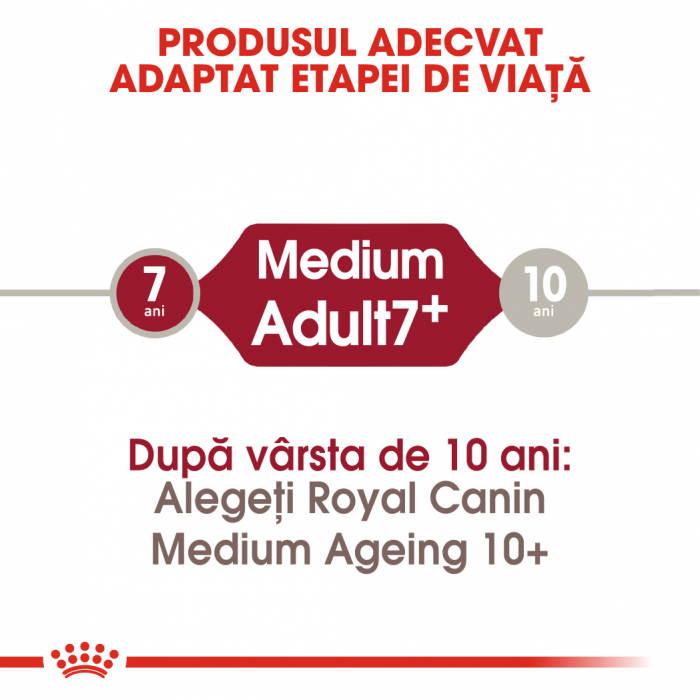 Royal Canin MEDIUM Adult 7+ Hrana Uscata Caine 1