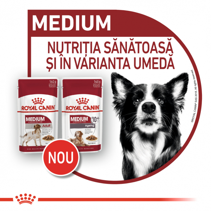 Royal Canin Medium Ageing Hrana Umeda Caine 5