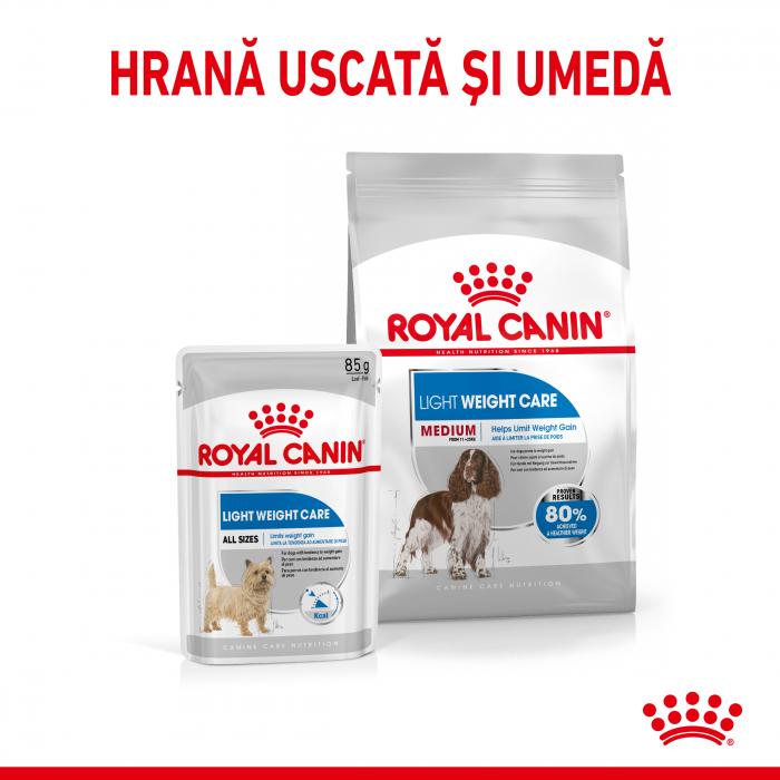 Royal Canin MEDIUM LIGHT WEIGHT CARE Hrana Uscata Caine 1