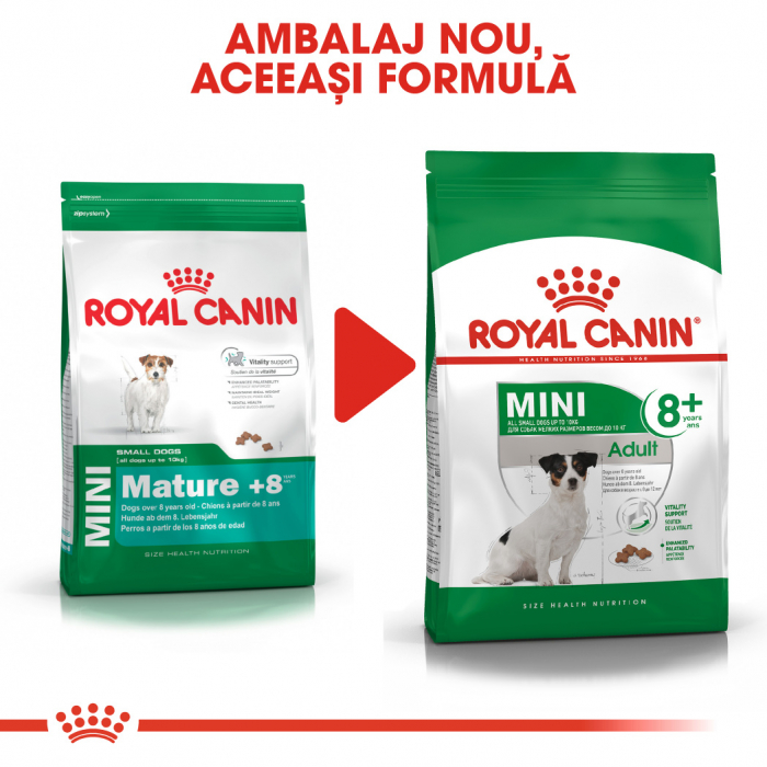 Royal Canin Mini Adult 8+ hrana uscata caine senior 5