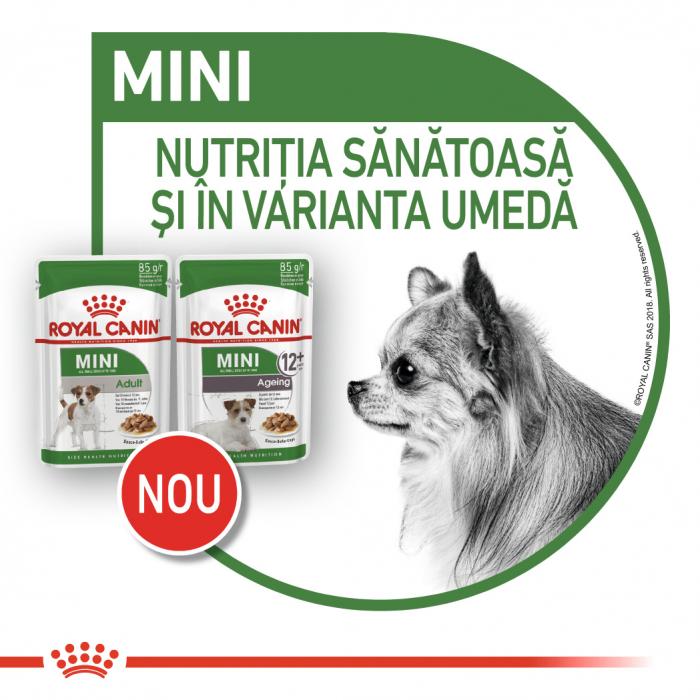 Royal Canin Mini Adult hrana umeda caine 6
