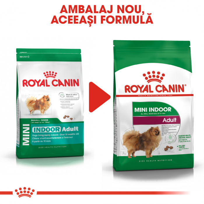 Royal Canin Mini Indoor Adult Hrana Uscata Caine 5