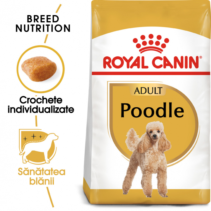 Royal Canin POODLE Adult Hrana Uscata Caine 0