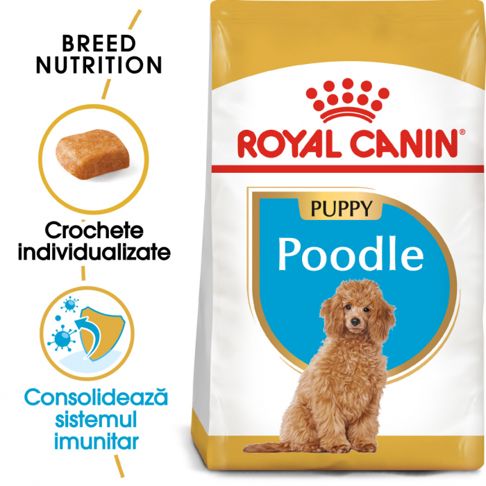 Royal Canin POODLE Puppy Hrana Uscata Caine 0