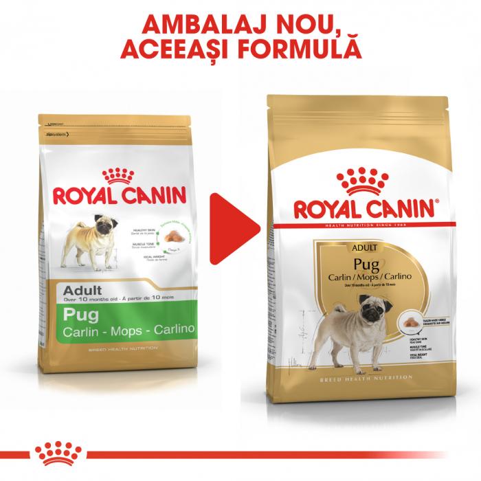 Royal Canin PUG Adult Hrana Uscata Caine 4