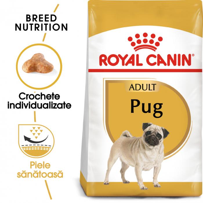 Royal Canin PUG Adult Hrana Uscata Caine 0