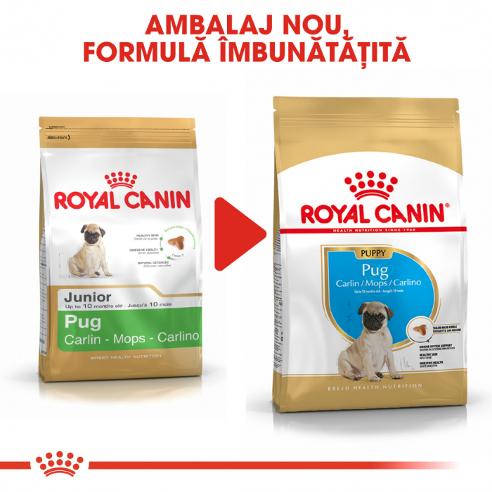 Royal Canin Pug Puppy hrana uscata caine junior, 1.5 kg 6