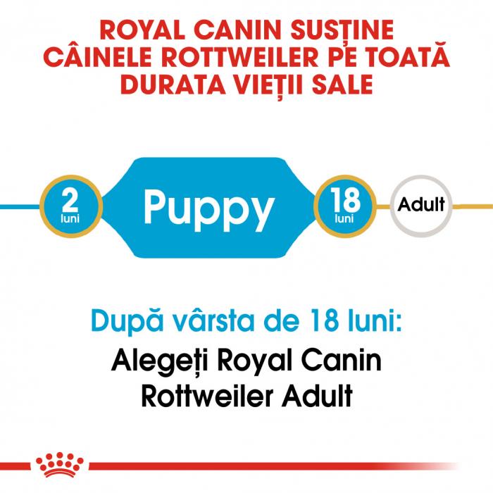 Royal Canin ROTTWEILER Puppy Hrana Uscata Caine 1