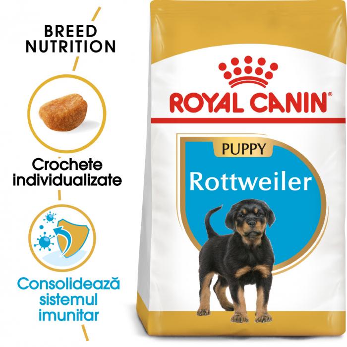 Royal Canin ROTTWEILER Puppy Hrana Uscata Caine 0