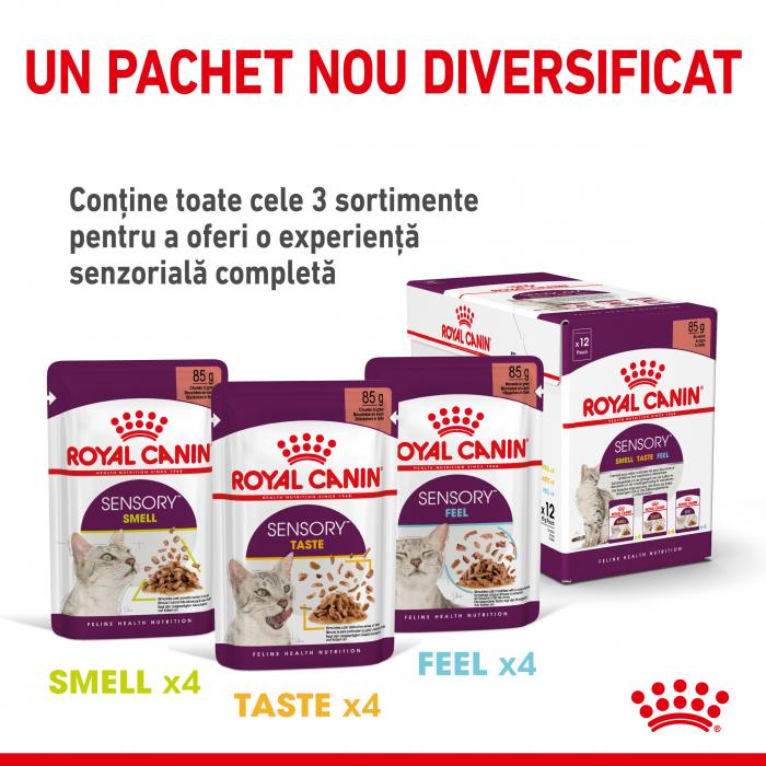 Royal Canin Sensory Taste, hrana umeda pisici, stimularea gustului (in sos), 12 x 85 g [6]