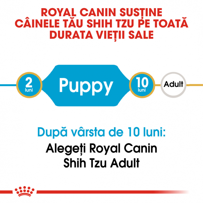 Royal Canin SHIH TZU Puppy Hrana Uscata Caine 1